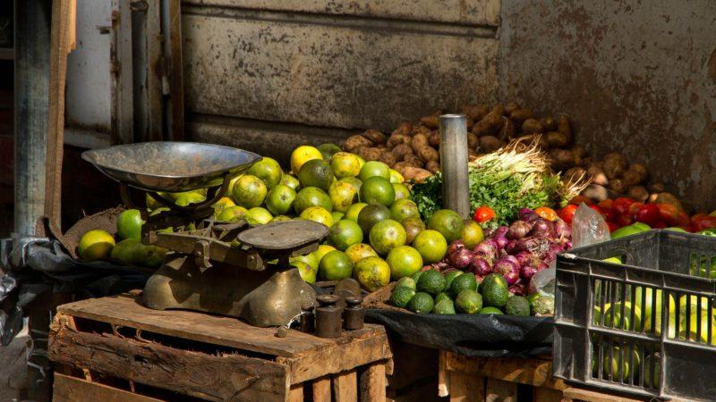L'agritech au service des petits exploitants : zoom sur 5 pépites d'Afrique subsaharienne