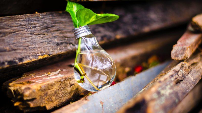 L'innovation frugale : faire plus avec moins