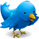 Telcospinner vous propose sa veille sur Twitter