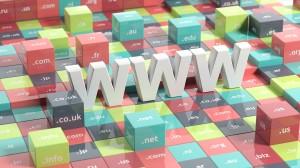L'ICANN est chargée entre autres de l'attribution des noms de domaines