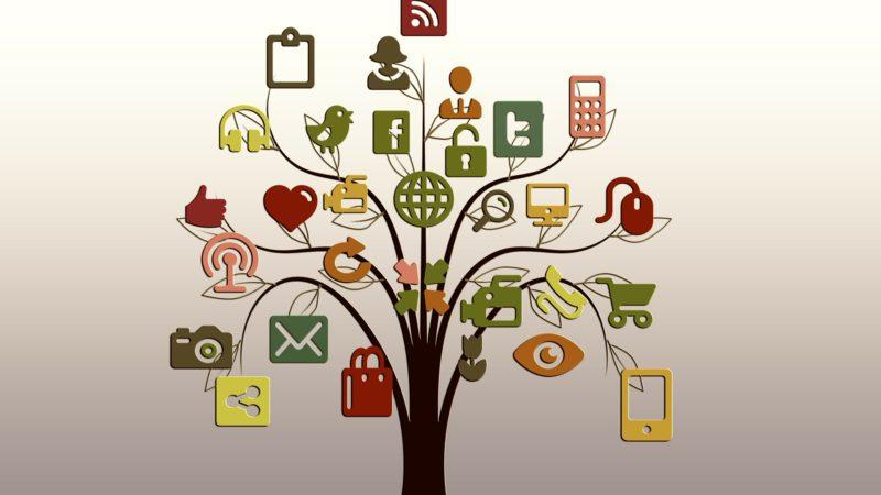 Les réseaux sociaux d'entreprise et la gestion de l'information