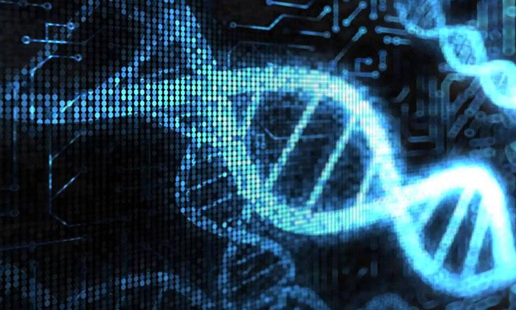 Differential medicine – Partie 2 : ADN 2.0