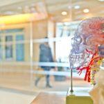 L'intelligence artificielle au quotidien : quels enjeux économiques et sociaux ?